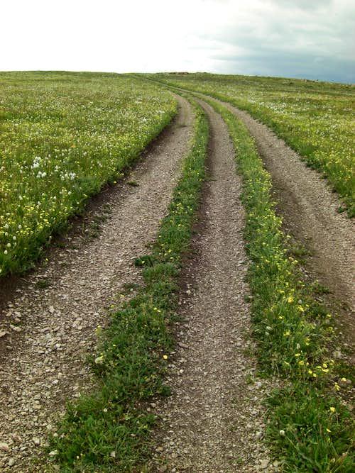 Bull Mountain Trail Plateau Three-track
