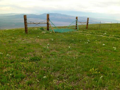 Bull Mountain Cattle-grate