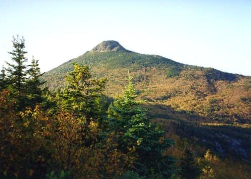 Summit of Camels Hump from...