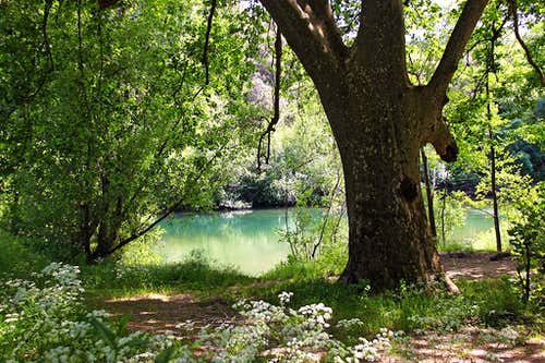 At Hérault river