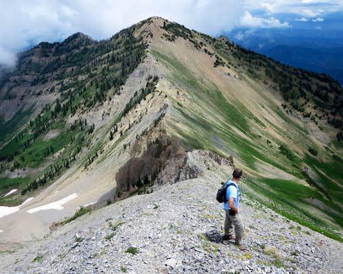 Looking back at Provo Ridge