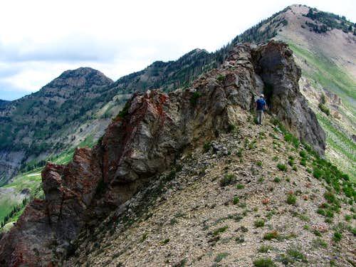 Provo Ridge outcrop