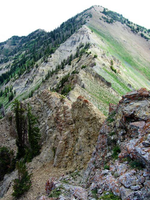 Provo Ridge & East Provo Peak