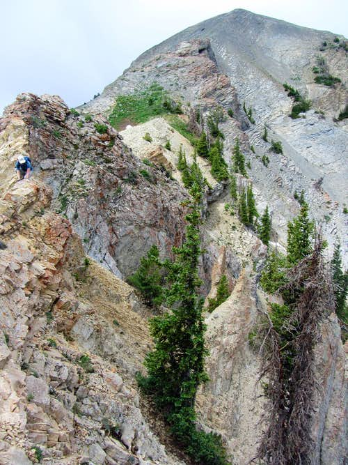 Scrambly terrain east of Provo Peak