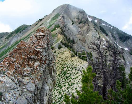 Provo Peak east aspect