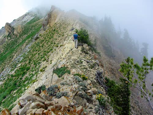 Provo Ridge scramble
