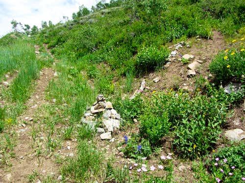 Provo Peak trail cairn