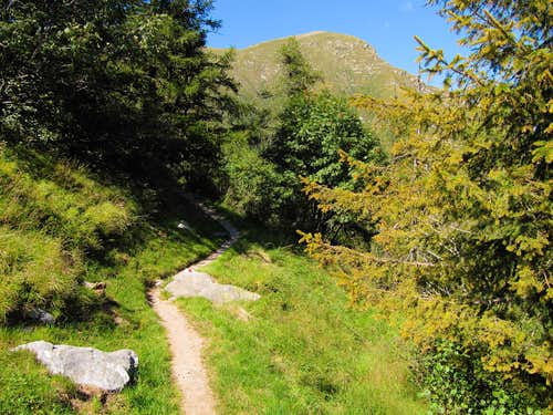 Cima Gaggio (2267m) as seen from the trail to Albagno