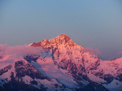 A purple Weisshorn