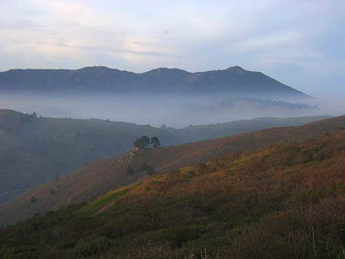 Mt. Tamalpais as seen from...
