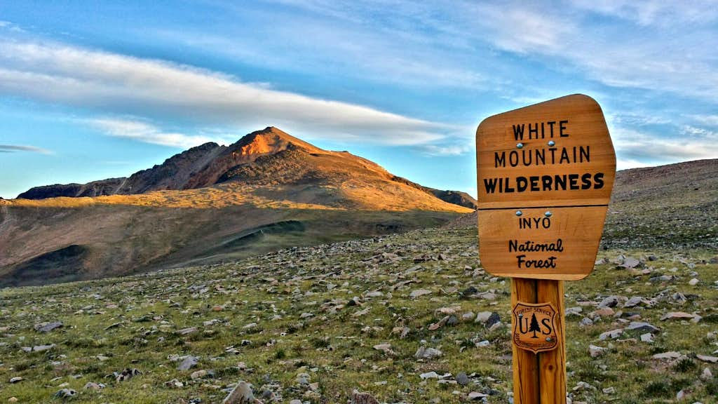 Wilderness sign and White Mountain Peak behind