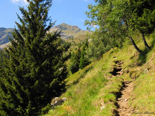 The trail (T3) between Mornera and Albagno