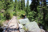 Lupine Meadows Creek