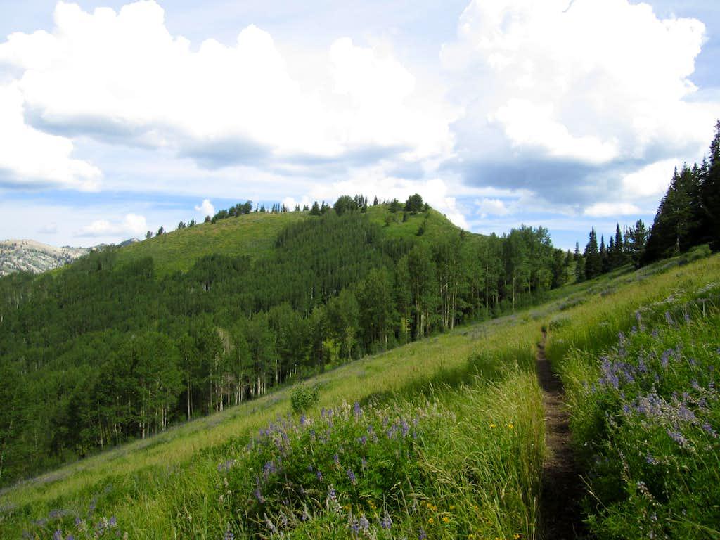 Ant Knolls Peak