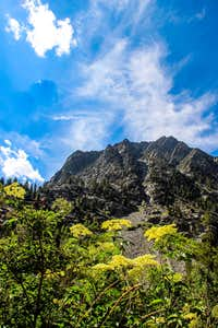 Mount Scowden 11,106\'  from Lundy Canyon