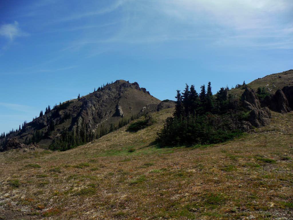 The summit of Tyler Peak