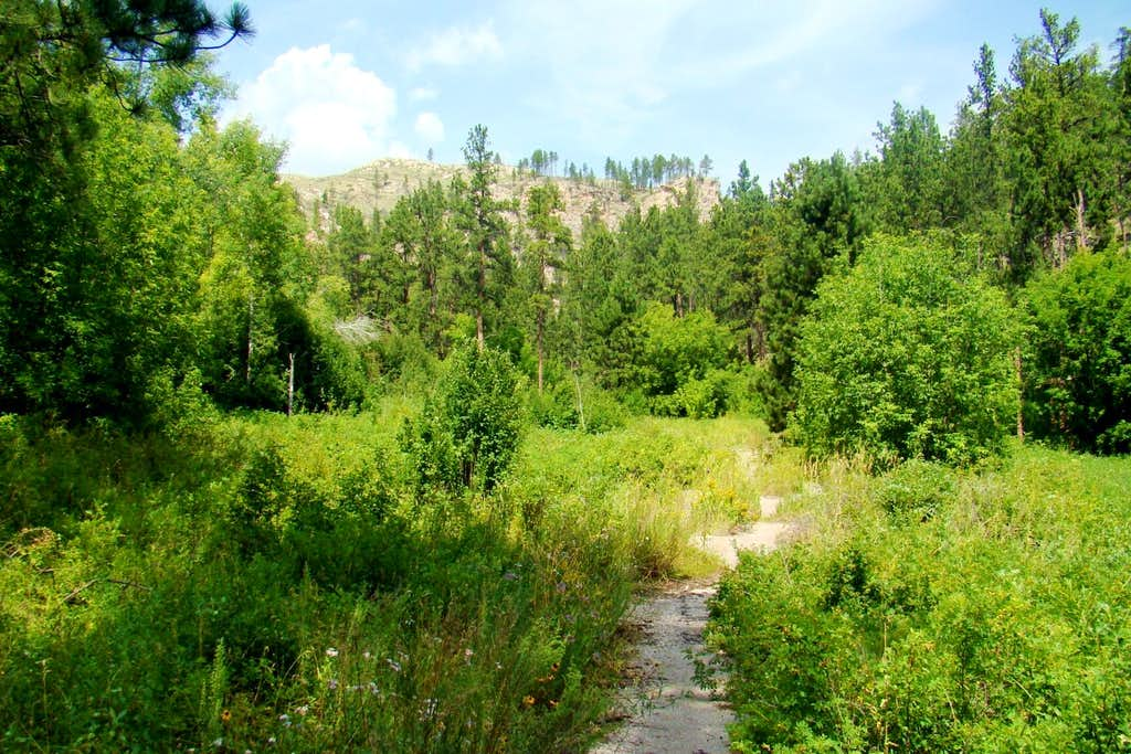 Hell Canyon Trail Asphalt