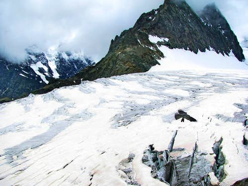 Trip to Glacier Blanc