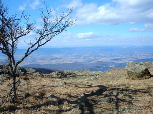 View from the summit area on...