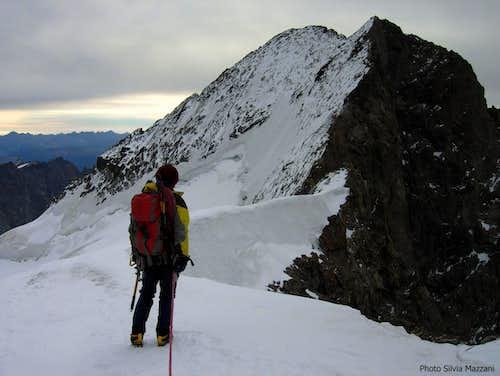 Barre des Ecrins summit ridge from Dôme de Neige