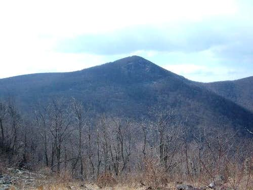 Looking at Hawksbill Mountain...