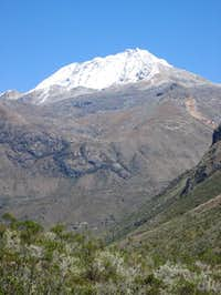 Ranrapalca from Quebrada Cayesh