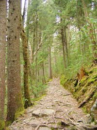 The Mount Sterling Trail...
