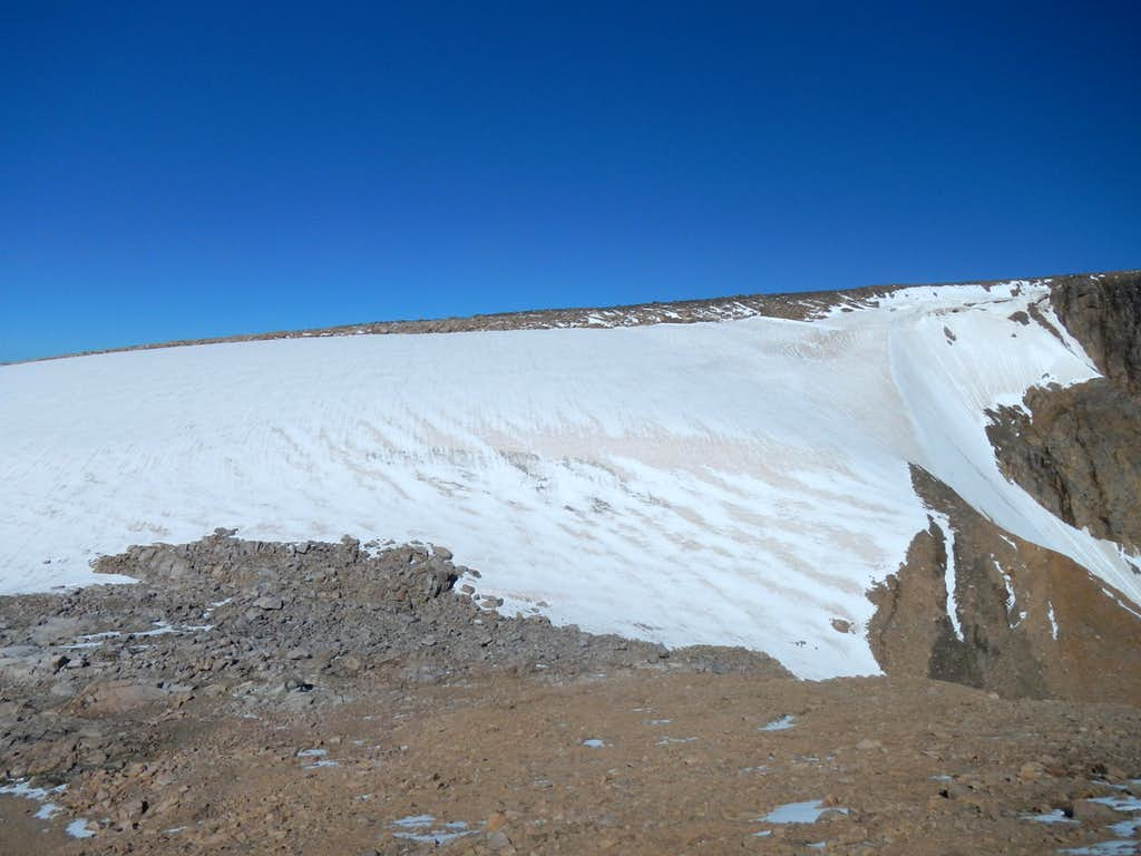 Forget Me Not Mountain Snow Field