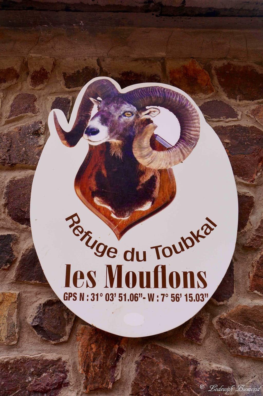 Refuge Les Mouflons (3207m)