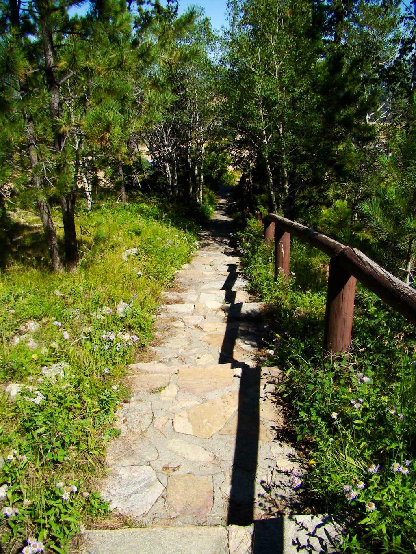 Terry Peak Summit Walkway