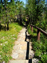 Terry Peak Summit Walkway