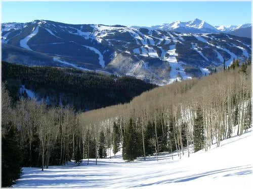 Vail Ski Resort from Bald\'s...