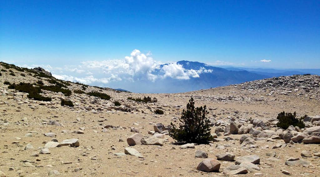 San Gorgonio Summit Plateau