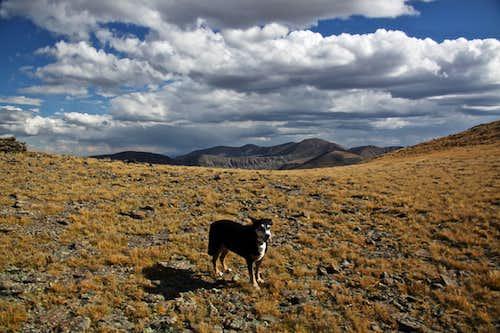 Small plateau at 13,060 feet