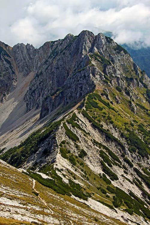 Visoki Kurji vrh