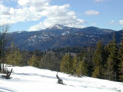 Mt. Ashland from the meadows...