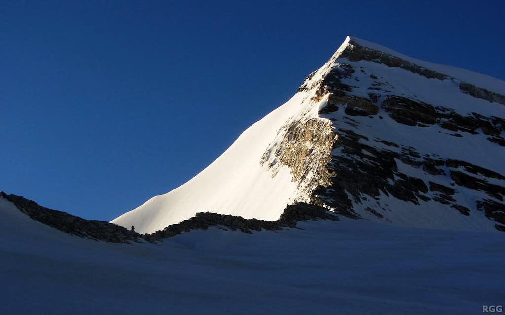 Approaching the Bruneggjoch (3365m)