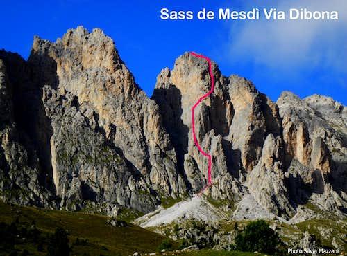 Dibona beta, Sass de Mesdì