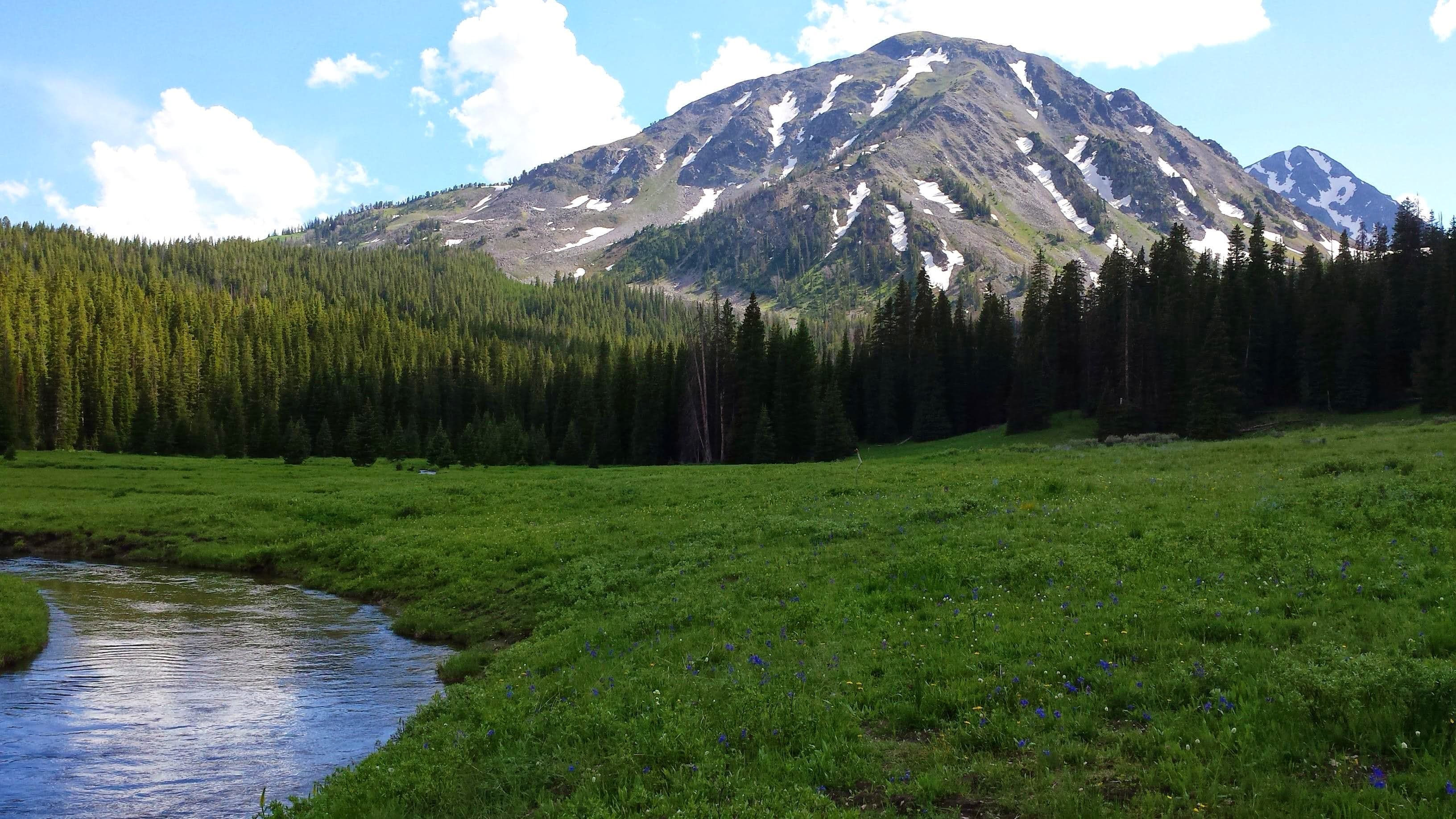 Alp Creek to Sedge Meadow and Beyond