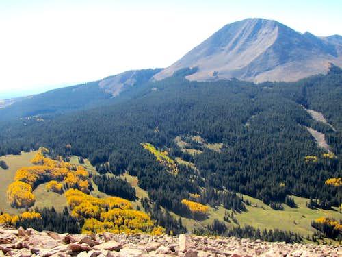 Mt. Mellenthin