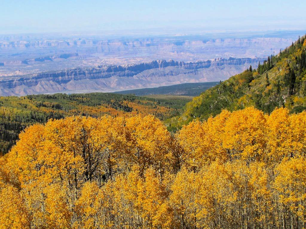 Spanish Valley Cliffs & Canyonlands
