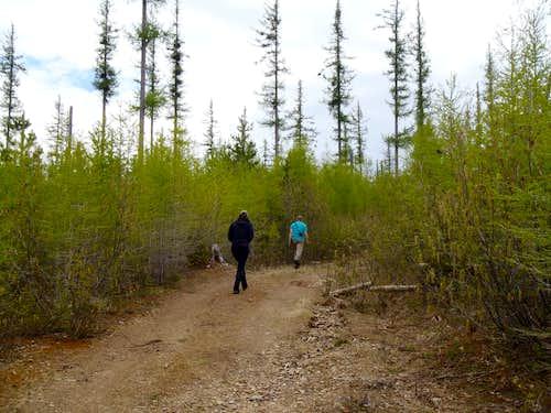 Lynx Mountain Access Road