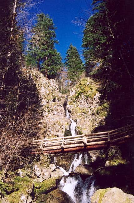 Rodney Falls.