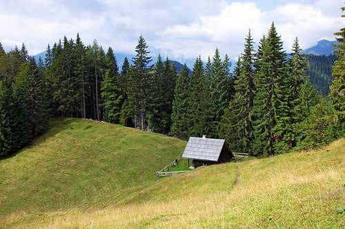 Brvoge alpine meadow
