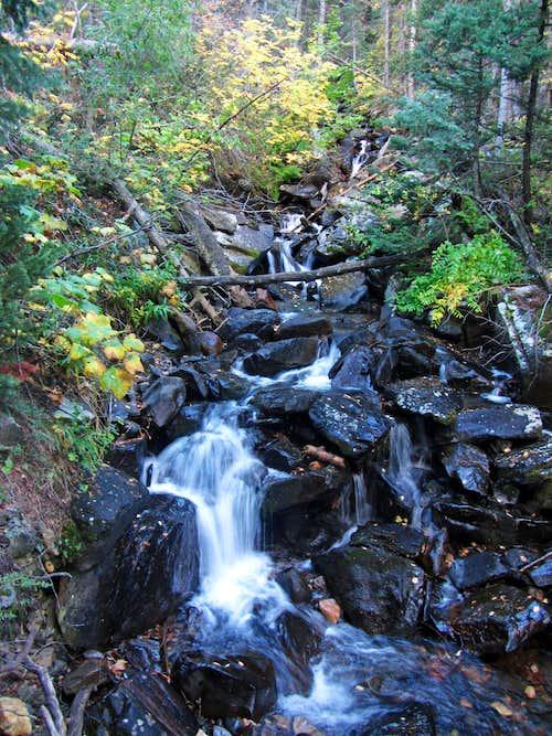 Broads Fork stream