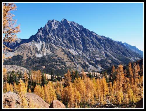Mt. Stuart & Larch Trees