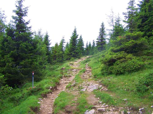 Hiking trail on Zweite Grebenzen Höhe