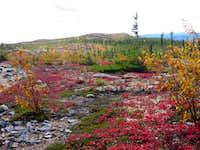 Pioui trail in autumn