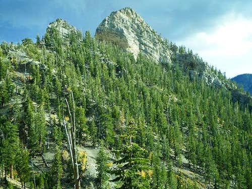 Cockscomb Ridge
