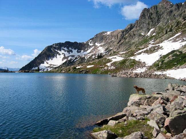 My dog at Pitkin Lake with...